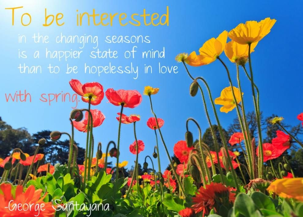10 quotes to help you jump into spring spring season quotes to be interested in the changing seasons is a happier state of mind than to mightylinksfo Gallery