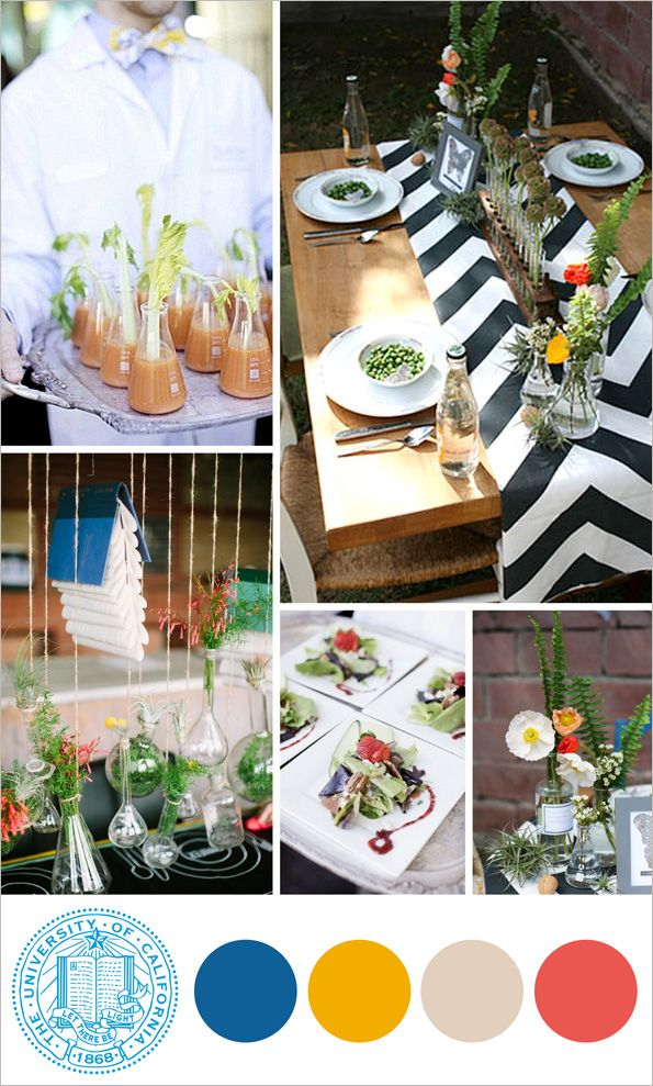 Decorating For A Graduation Party biology graduate graduation party ideas with stroke | graduation