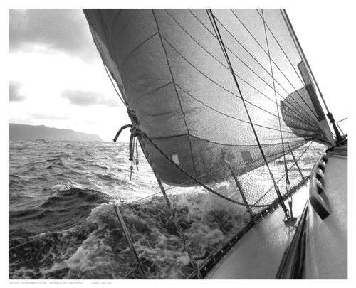 Paper 8 x 10 image 8 x 10 great black and white action photograph of sailboat on its way back to dock this art print poster is also available in gallery