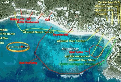 Akumal bay snorkel map | Vacation | Pinterest | Quintana roo, Mexico ...