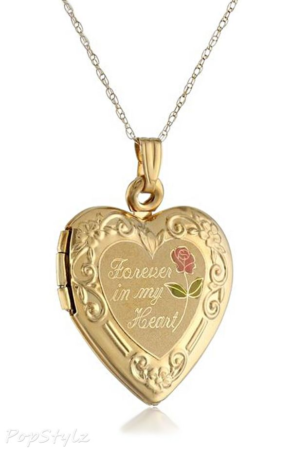 14k gold forever in my heart locket necklace clothes for gals gold forever in my heart locket necklace ive always wanted a golden heart locket aloadofball Gallery