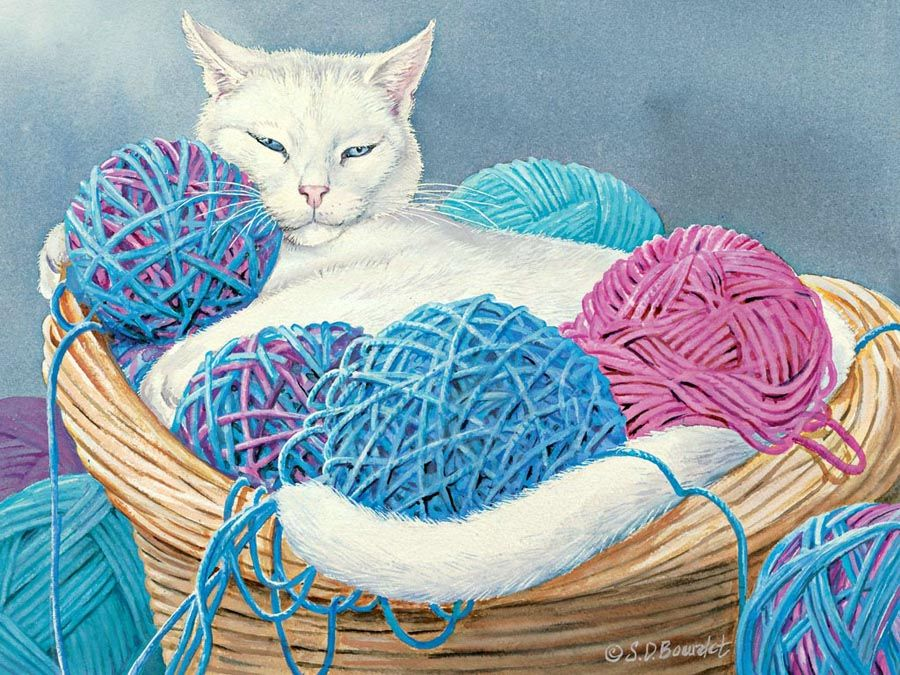 Картинки с котами и клубком ниток