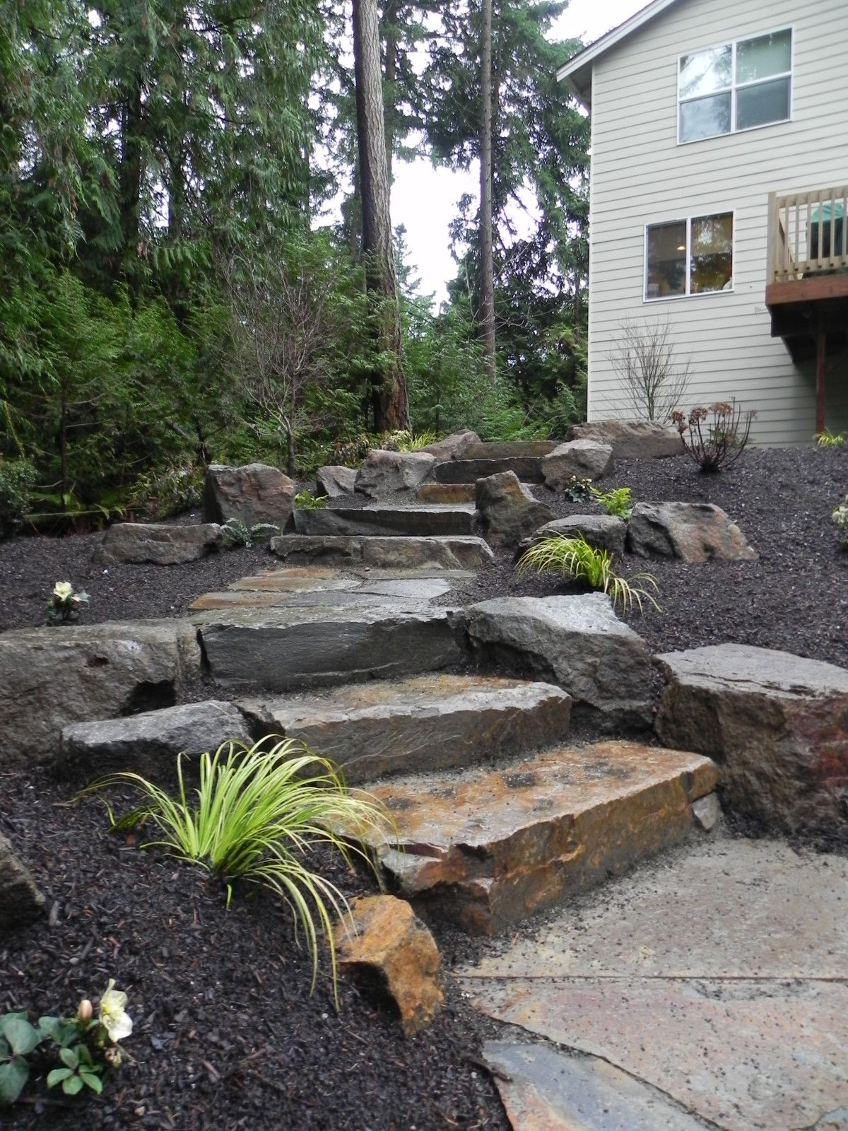 Woodland Garden With Stone Steps And Boulders Gardening