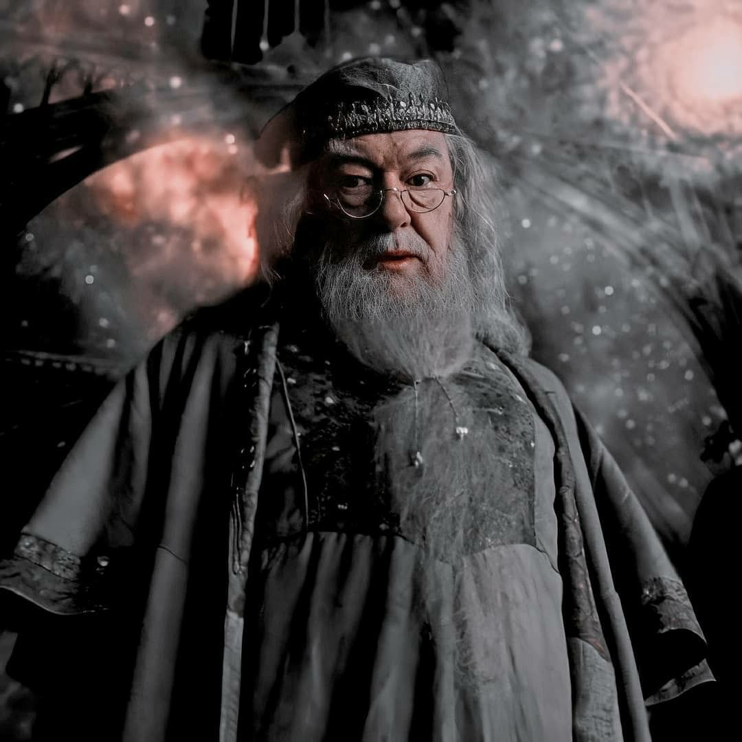 Dumbledore Harry Potter Dumbledore Harry Potter Characters Harry Potter Icons