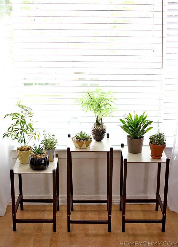 diy modern plant stand diy ideas diy plant stand modern plant stand plants. Black Bedroom Furniture Sets. Home Design Ideas