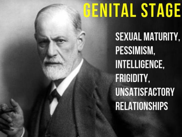 freud genital stage