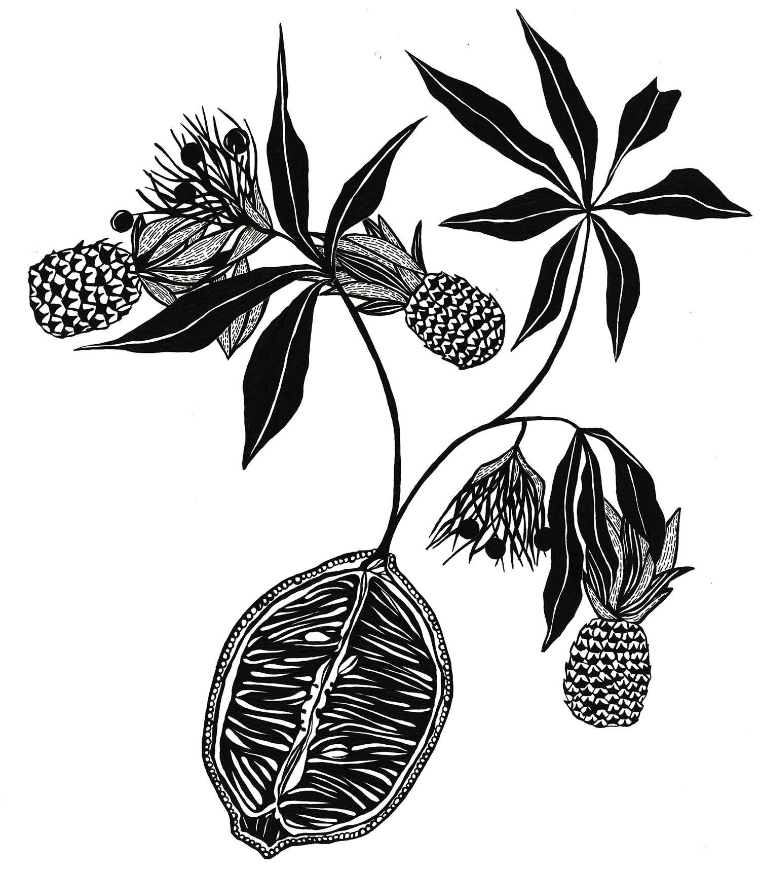 lemonpineappleplantx