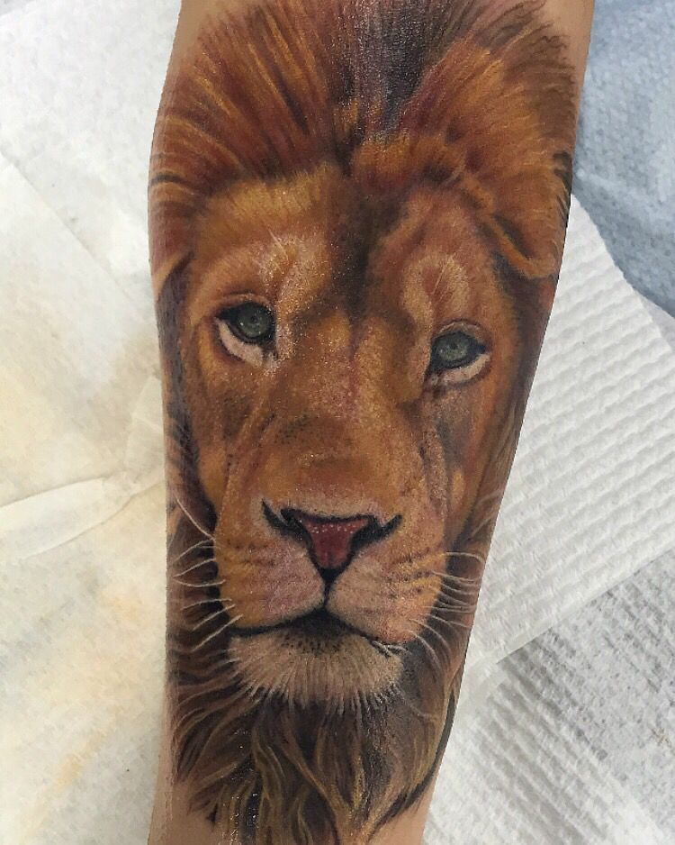 Fore Arm Colour Lion Tattoo Done By Diego Mickey From Southside Custom Ink Tattoos Melbourne Australia Lion Arm Tattoo Colorful Lion Tattoo Mens Lion Tattoo