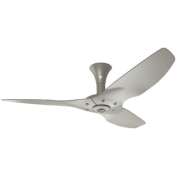 Haiku Monochrome Low Profile Ceiling Fan With Images Ceiling