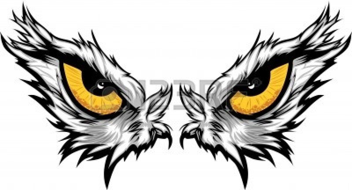 Stock Vector In 2020 Eye Illustration Eagle Mascot Eagle Vector