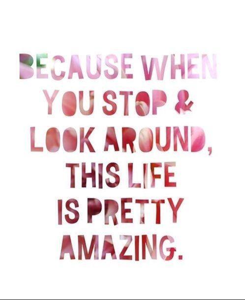 Appreciate Life Quotes: Learn To Appreciate Life Quotes. QuotesGram