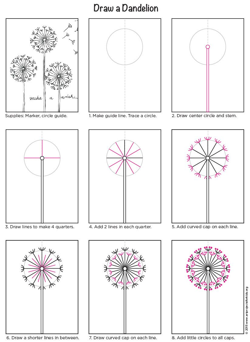 Draw A Dandelion How To Draw Pinterest Drawings Art And Art