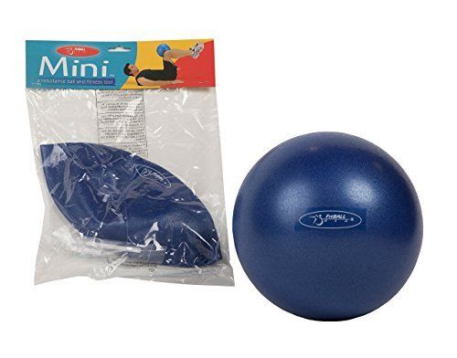 Ball Dynamics FitBALL Mini Inflatable Exercise Ball (9-inch)