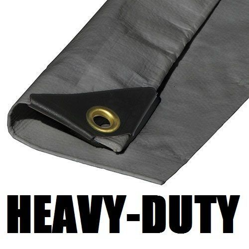 10x60 Extra Heavy Duty 12 Mil Silver Tarp 3 Ply Coated Reinforced Canopy 6 Oz 3 Layer Includes Tarps Tools And Toys Maintenance Heavy Duty Tools And Toys Tarps