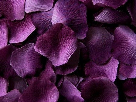 500 Silk Rose Petals Grape Purple Ombre Microfiber Wedding