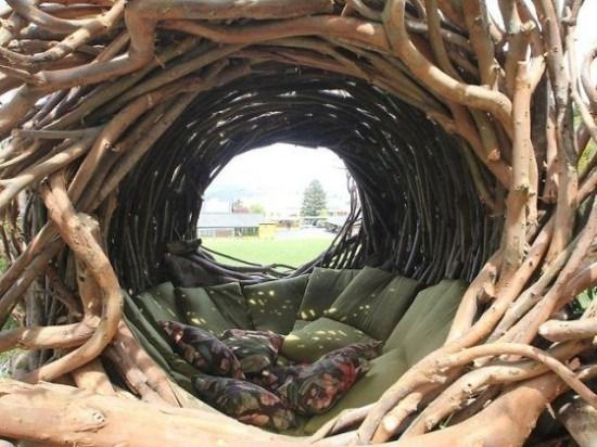 inside-human-nest.jpeg (550×412)