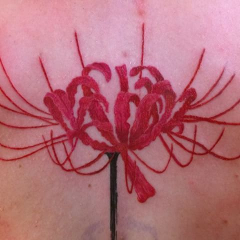 Image result for red spider lily tattoo | ink | Pinterest ...