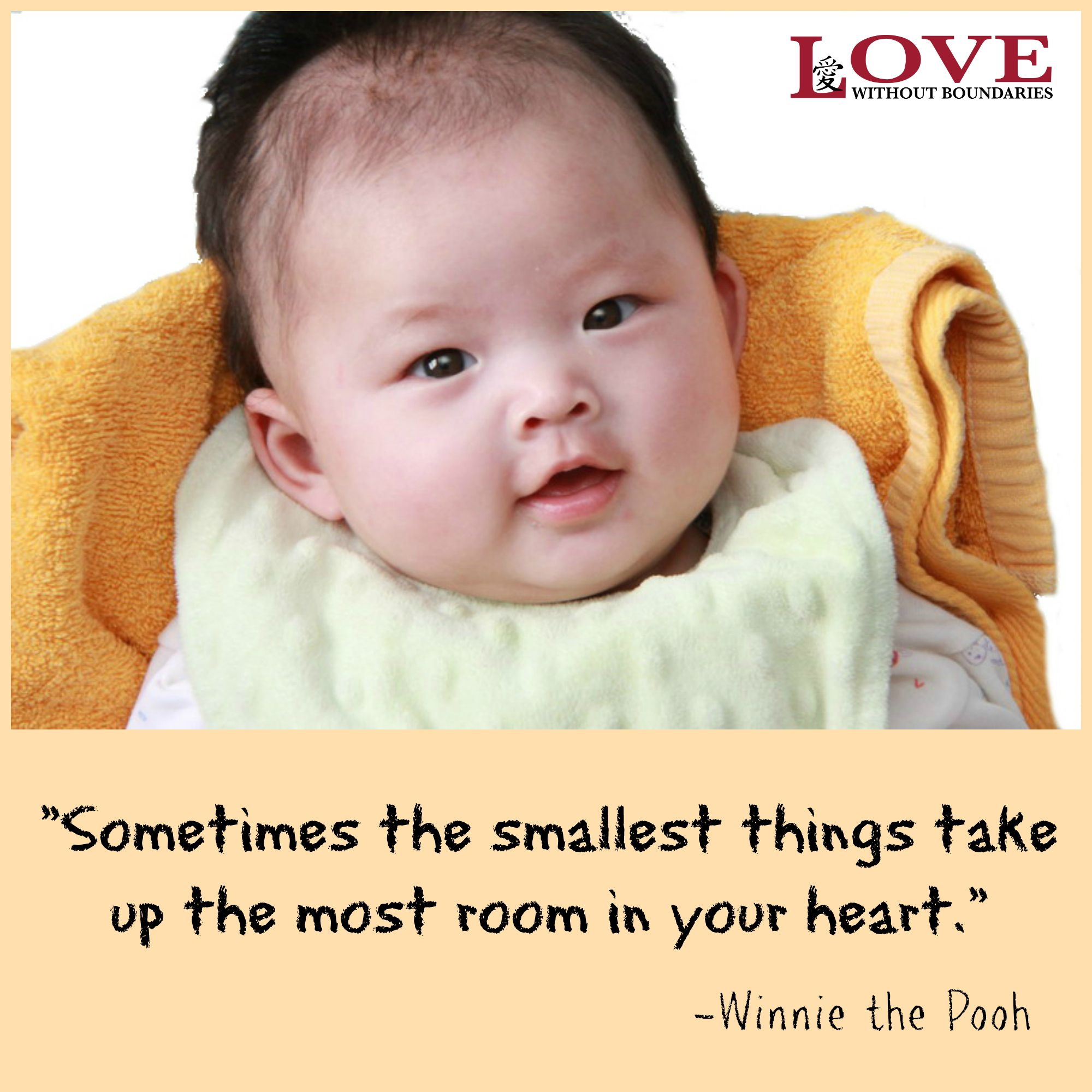 Winnie The Pooh Quotes Sometimes The Smallest Things: Sometimes The Smallest Things Take Up The Most Room In