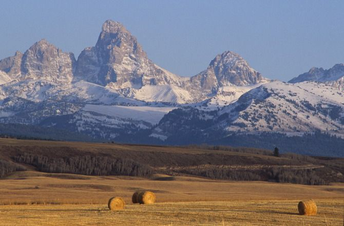 Teton Mountains and wheat field, near Tetonia, Idaho,