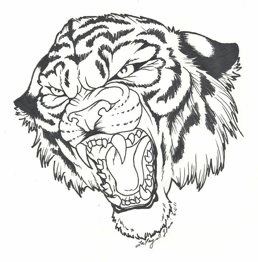 Картинки тату тигров