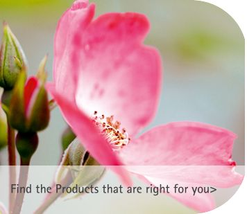 Beautiful skin, hair and beauty products