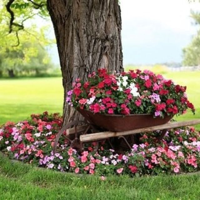 Flower Garden Ideas Around Tree lovely old wheelbarrow. | gardening | pinterest | gardens, yards