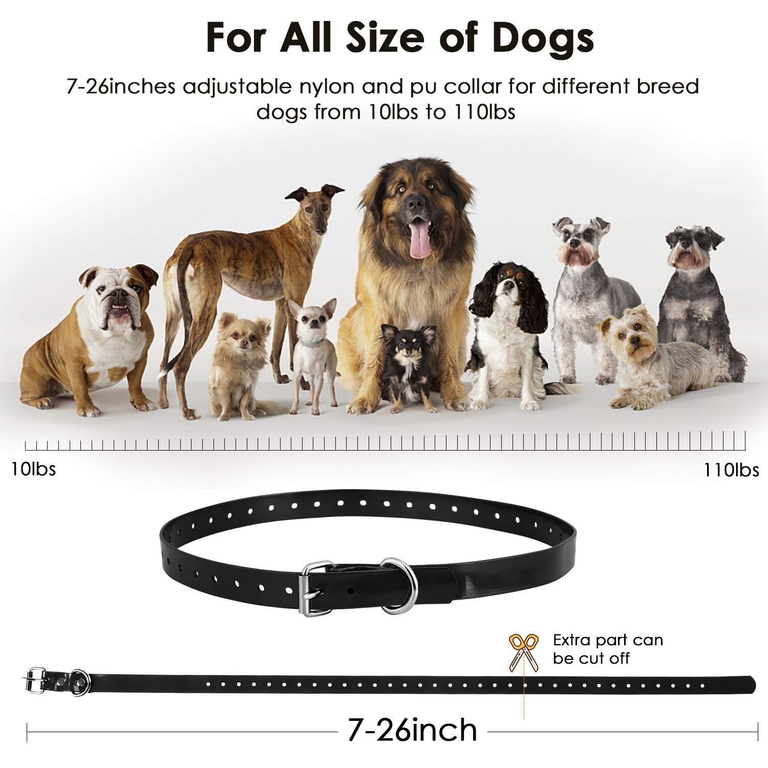Here Are 5 Top And Best Dog Training Collars I Have Selected It