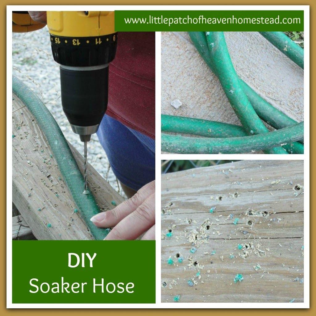 garden soaker hose. How To Make A Soaker Hose For $0 | Little Patch Of Heaven Homestead Garden