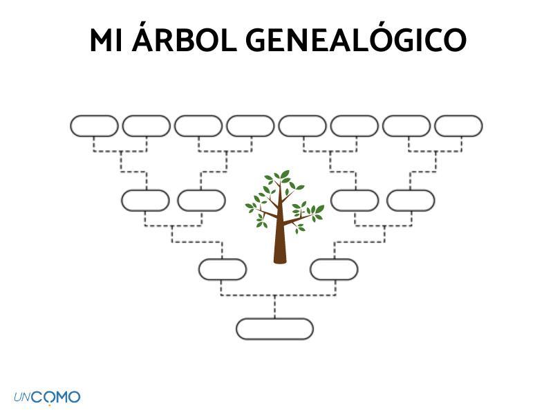 Cómo Hacer Un árbol Genealógico En Word Pasos En 2021 Arbol Genealogico Cómo Hacer Plantillas De Infografías Gratis