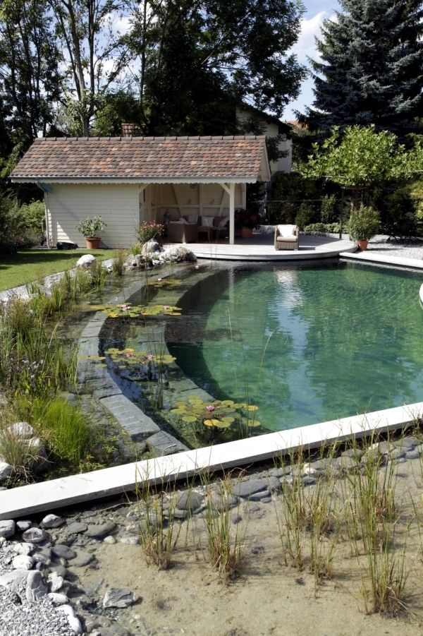 Diy by swimming pond with a natural self cleaning process for Natural pond maintenance