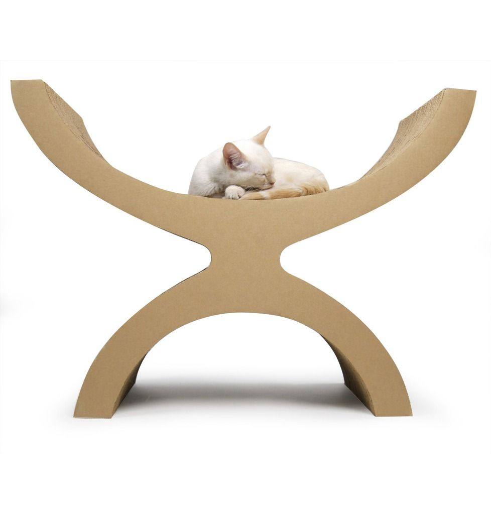Couchette hiding spots stand tall and environment for Cat chaise lounge