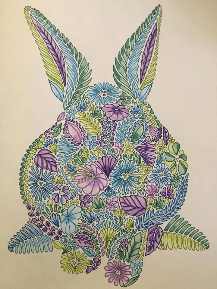 Coloring Ideas Bunny Millie Marotta Animal Kingdom Millie Marotta Coloring Book Coloring Books
