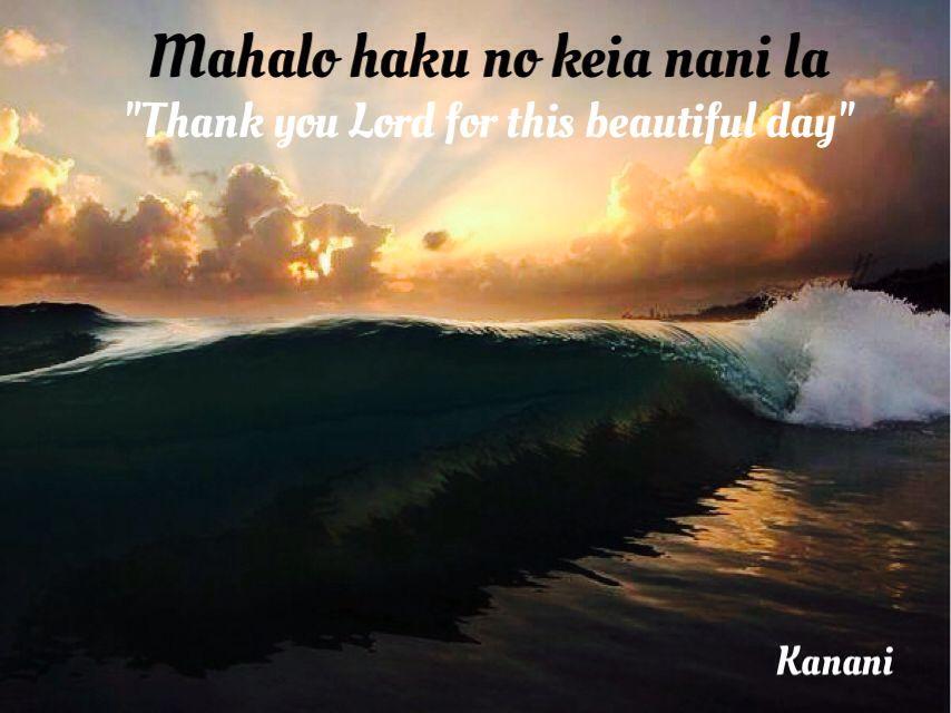 Hawaiian Saying Hawaiian Quotes Hawaiian Phrases Hawaii Language