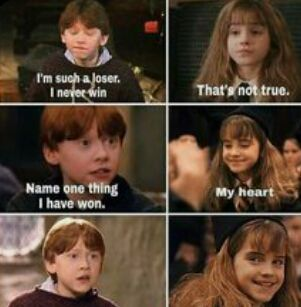 Ship it or Rip it  ~Harry Potter Ships~
