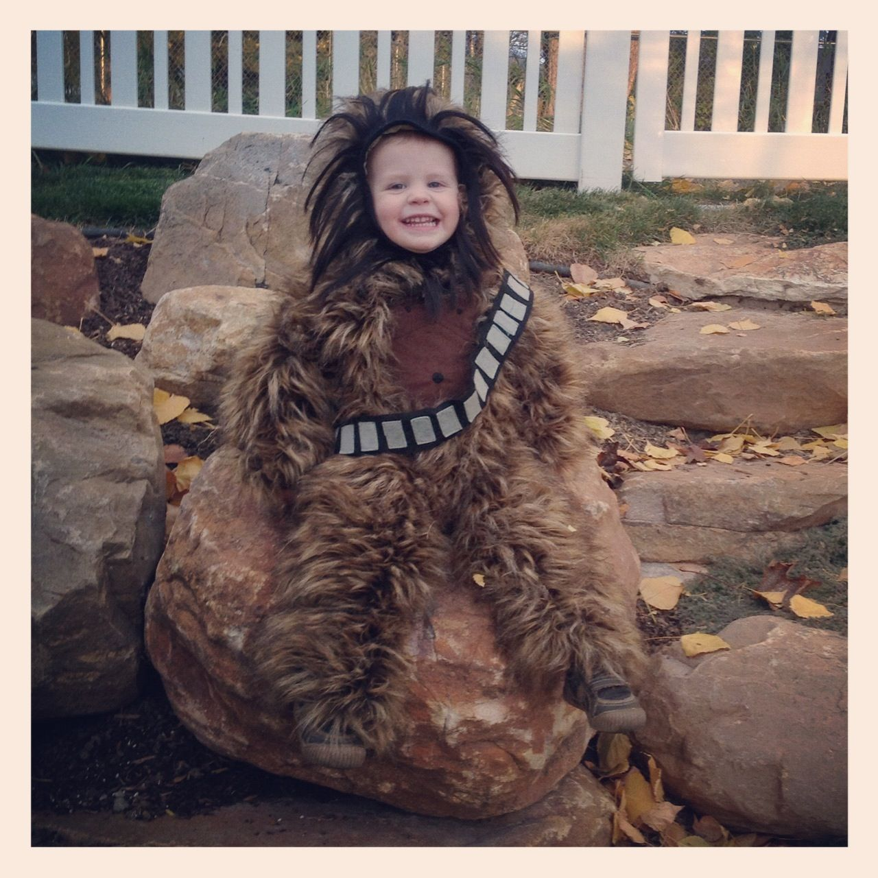 Just Another Day in Paradise: Baby Chewbacca Costume | Crafts I ...