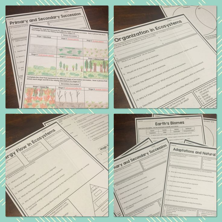 Science Homework Bundle | Middle School Science | Homework