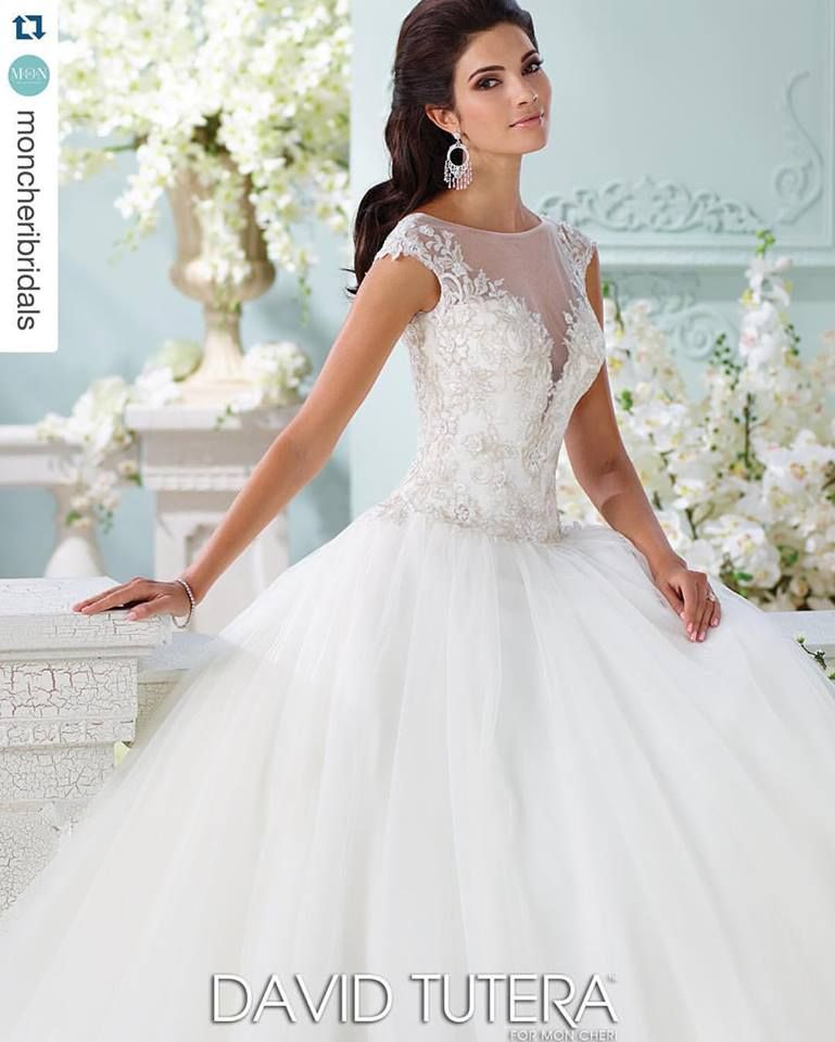 Kyle Earrings | Ball gowns, David tutera and Illusion neckline