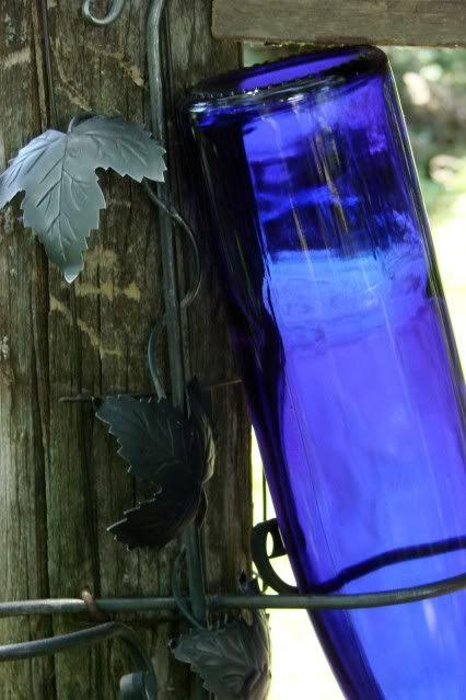 blue bottle on fence