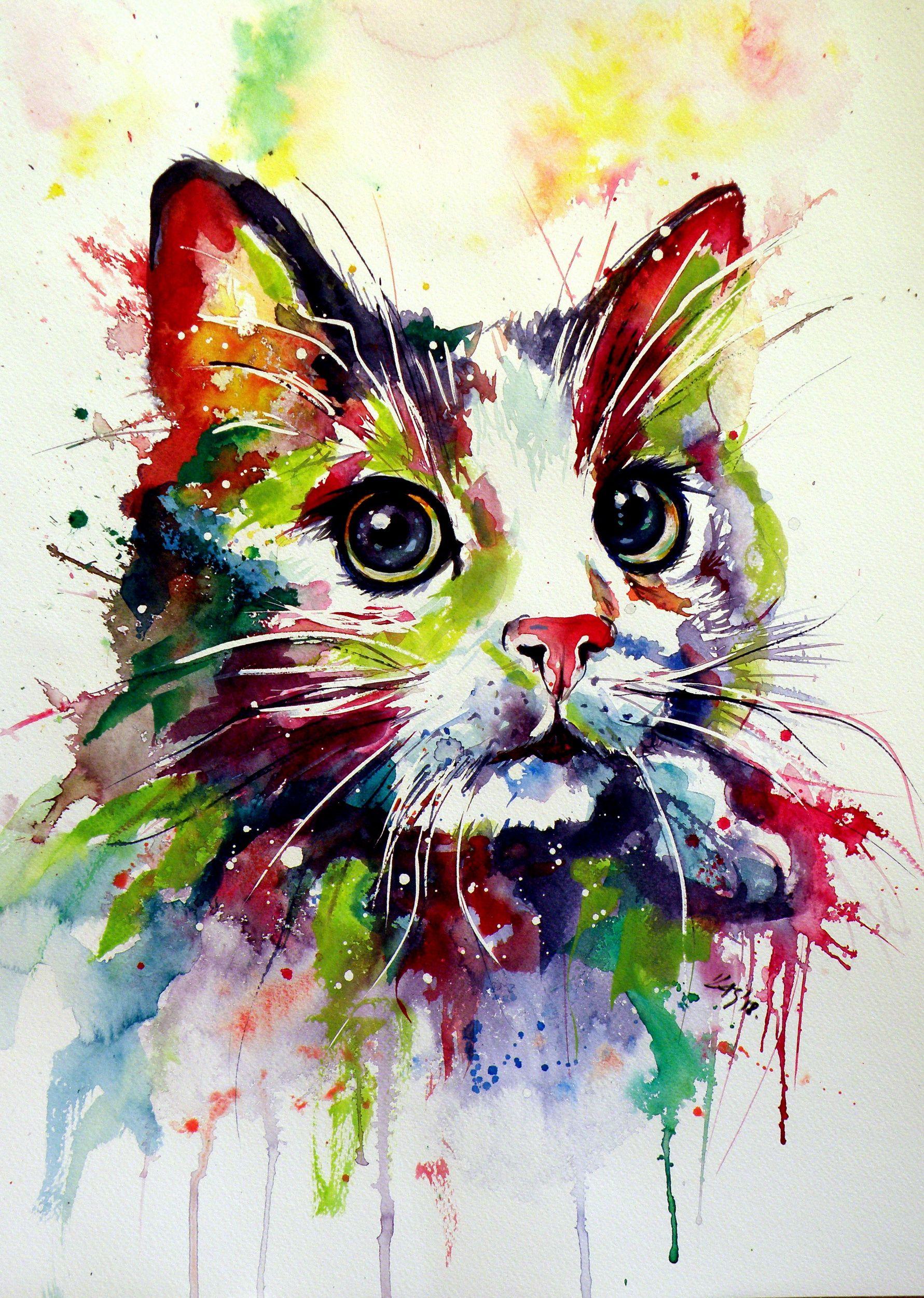 Colorful Cat Animal Paintings Cat Art Watercolor Cat