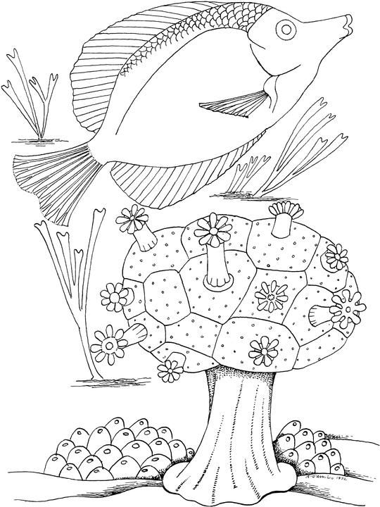 Free Seascape Coloring Pages | coloring pages | Pinterest