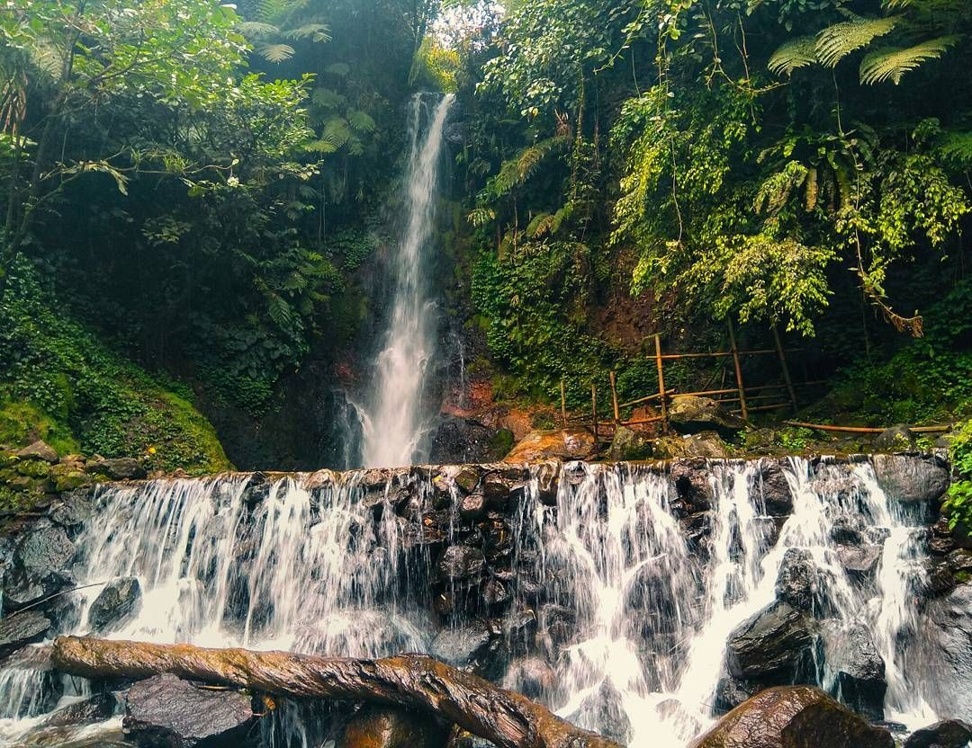 3 Tempat Wisata Bogor Yang Baru Di 2020 Tempat Air Terjun Alam