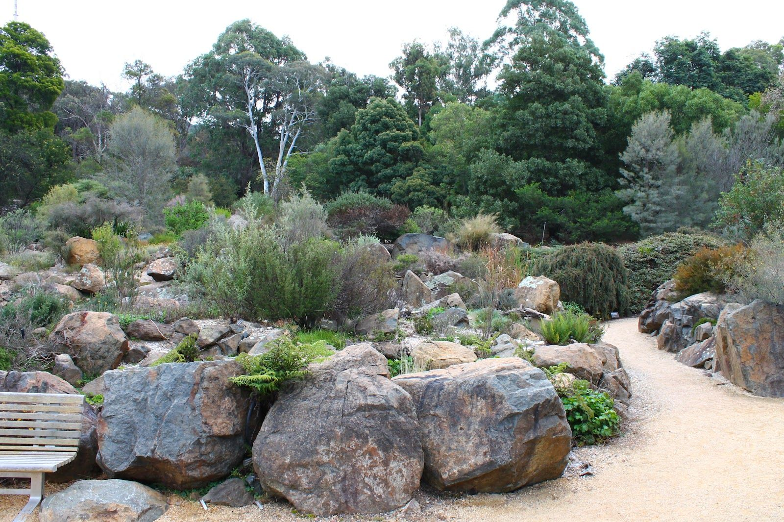 Remarkable australian native garden design ideas for Australian native garden design ideas