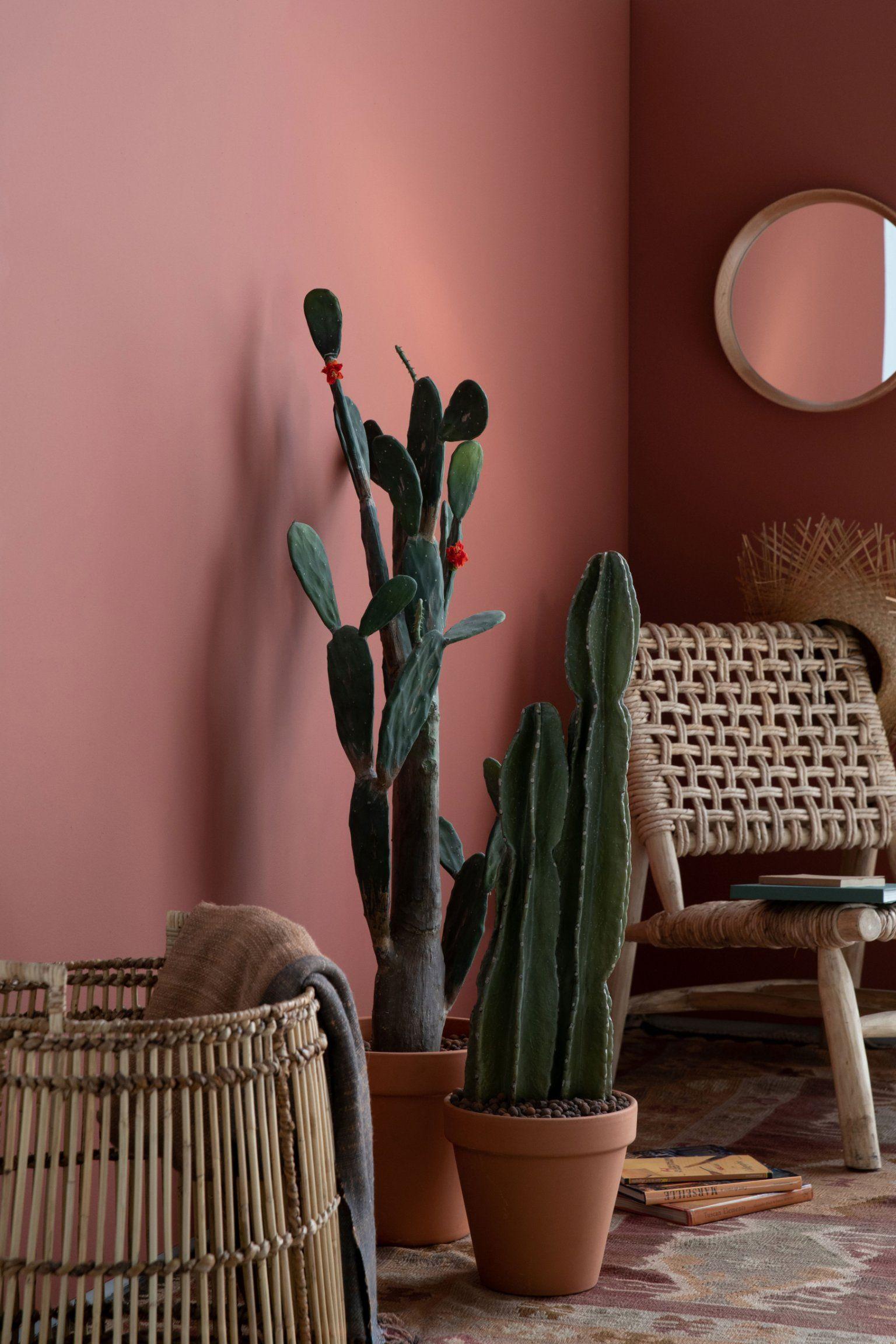 Decouvrez Les Tres Tendance Nouvelles Couleurs De Flamant By Tollens En 2020 Decoration Salon Couleur Decoration Salon Moderne Deco Peinture