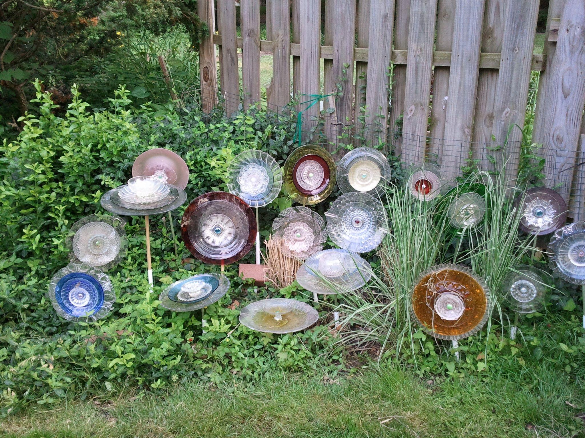 plate glass garden