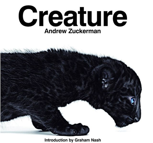 Creature Book by Andrew Zuckerman