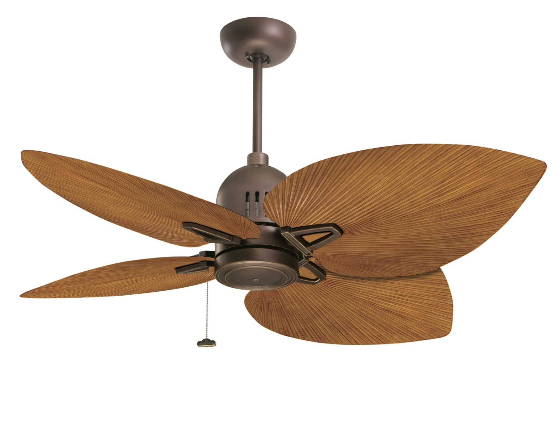 Bigleaf ceiling fans twin ceiling fans home depot best home oil rubbed bronze nedmac outdoor ceiling fan w pecan palm leaf blades aloadofball Choice Image