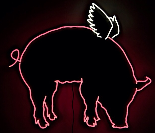 Try our new pig wings www.jrgvancouver.ca Neon art, Neon