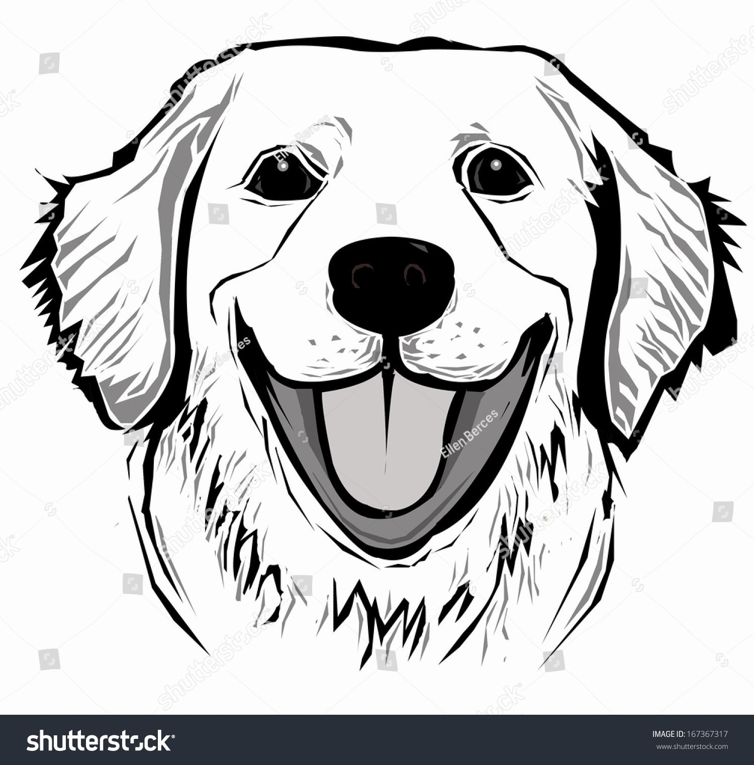 Golden Retriever Face Large Art References Pinterest Perros