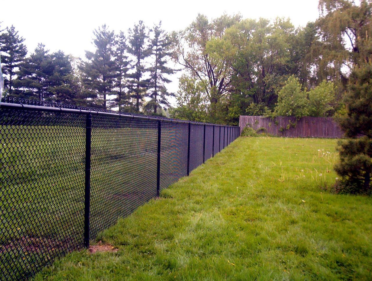 Black Chain Link Fence In 2020 Black Chain Link Fence Fence Design Chain Link Fence Cost