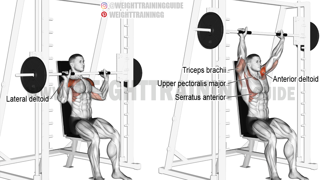 Weight plate reverse curl exercise guide and video